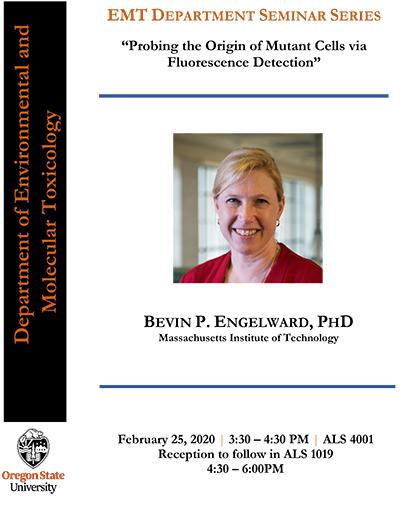 Bevin Engelward Seminar