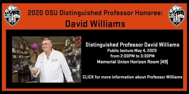 Distinguished Professor David Williams Public lecture