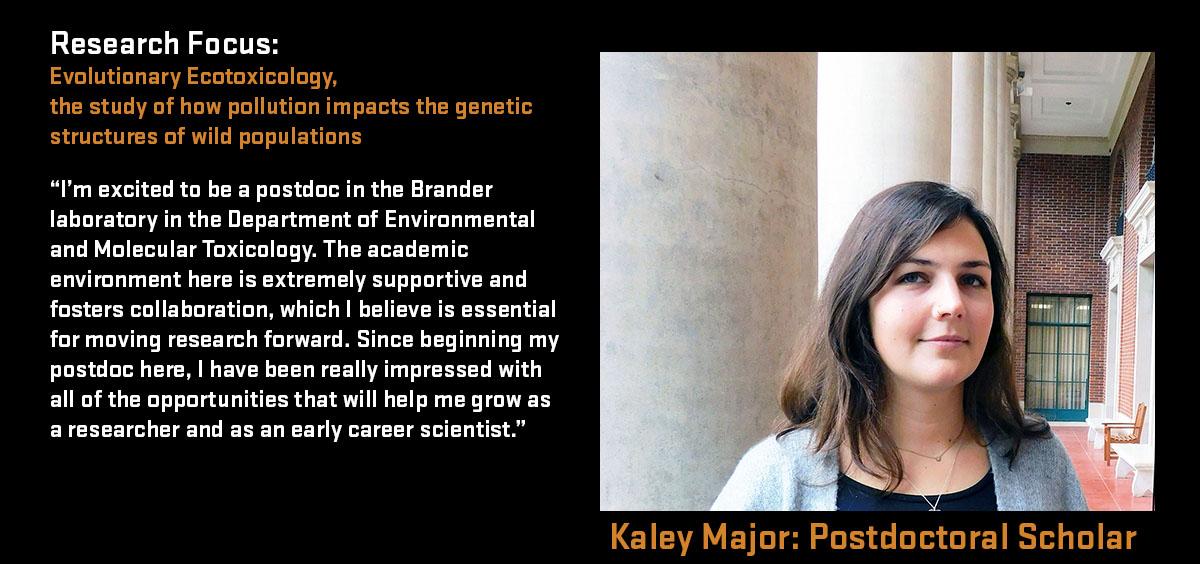 Kaley Major: Post-Doctoral Scholar