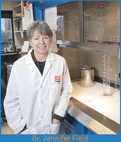 Dr. Jennifer Field in her lab