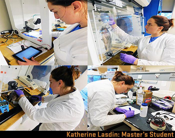 Katherine Lasdin in Susanne Brander's lab