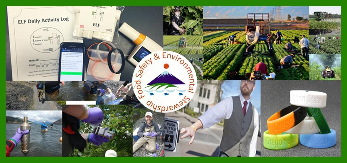 Food Safety and Environmental Stewardship