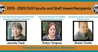 2019 - 2020 CAS Faculty and Staff Awards